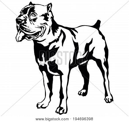 Decorative portrait of standing in profile dog Cane corso italiano vector isolated illustration in black color on white background