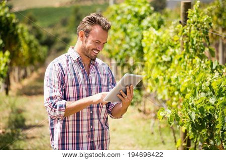 Young man using digital tablet at vineyard on sunny day