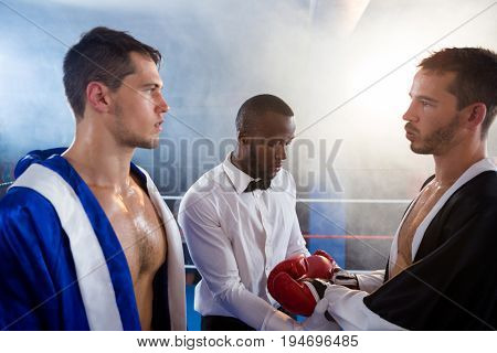 Referee checking gloves of male boxer in boxing ring