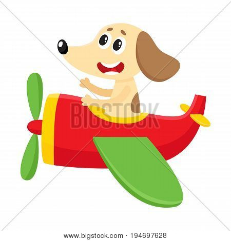 Cute funny dog, puppy pilot character flying on airplane, cartoon vector illustration isolated on white background. Little baby dog, puppy pilot, animal character flying in open airplane
