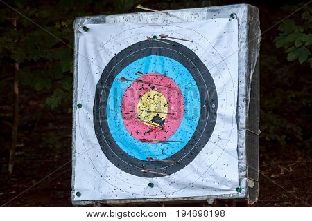 sport aim for exercises with archery arrows