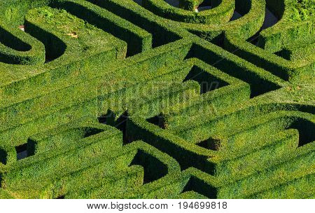 Maze in Venice Italy - nature background