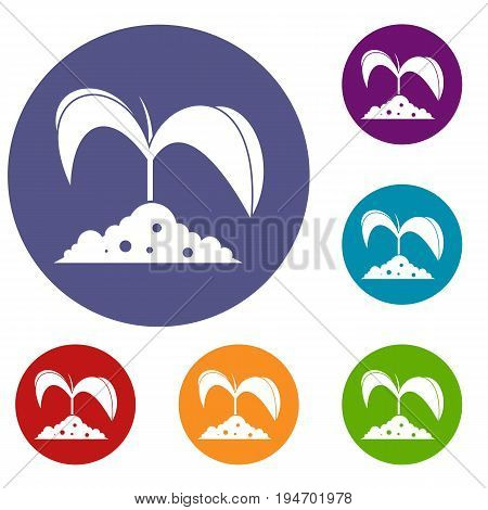 Green seedling in soil icons set in flat circle reb, blue and green color for web