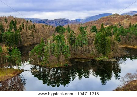 Lake District Cumbria Tarn Hows  with reflection on water