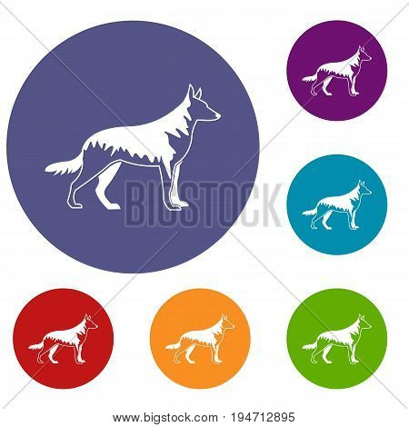 Shepherd dog icons set in flat circle reb, blue and green color for web