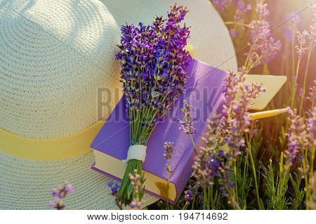 Straw hat in Lavanda fields in Provence near Valensole. France