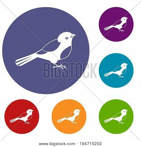 Bird icons set in flat circle reb, blue and green color for web