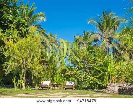 Tropical  background from Alona Beach at Panglao Bohol island with beach chairs on green meadow with blue sky and palm trees. Travel Vacation