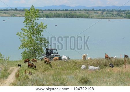 View of from Standley Lake Regional Park in Westminster Colorado and Rocky Mountain foothills and Front Range prairie