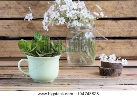 rural still life with a green cup of melissa officinalis on a wooden table