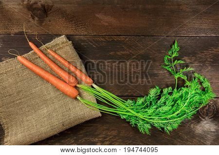 An overhead photo of vibrant young carrots with green leaves, shot from above on dark rustic textures with a place for text