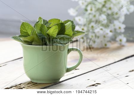 Green cup of melissa officinalis on a wooden table