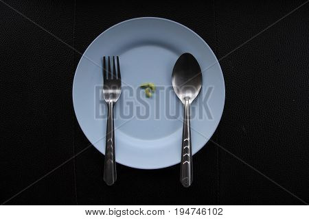 Concept of extreme dieting. Only few beans on empty dish.
