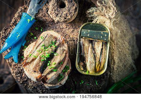 Tasty Sandwich Wirh Sardines And Wholegrain Bread