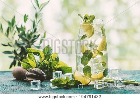 Mojito cocktail with lime and mint in highball glass on nature background