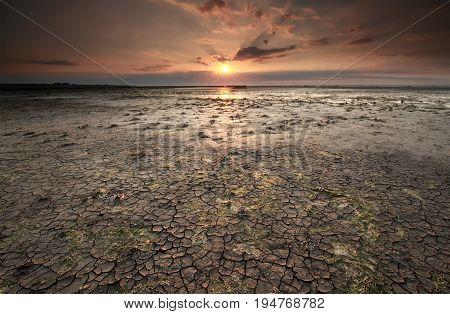 cracked mud at Wadden sea coast at low tide