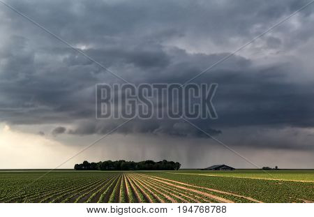 raining cloud over field in summer farmland