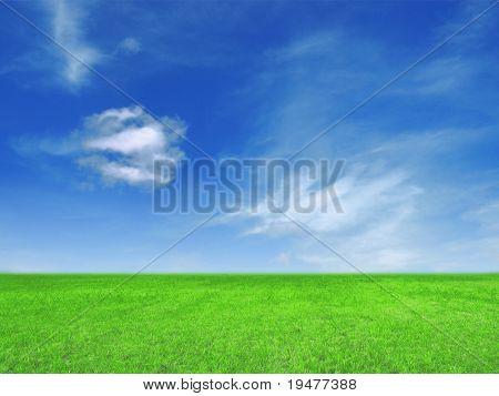 Blue sky and grass