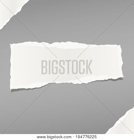 White note, notebook, copybook paper stuck on grey background