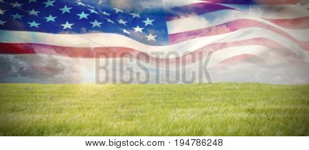 Low angle view of American flag against nature scene