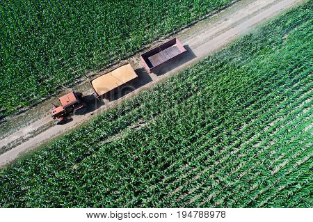 Tractor Transporting Grains In Trailer