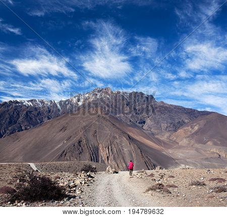 An unidentified hiker with backpack walking on the road from Muktinath to Jomsom on Annapurna Circuit trek in Annapurna Conservation Area Nepal Himalaya