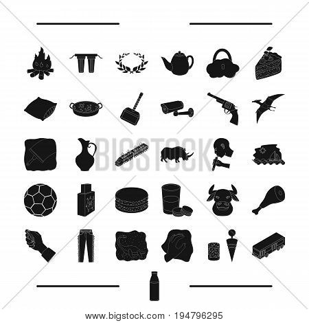drink, animal, parking and other  icon in black style. transport, cleaning icons in set collection.