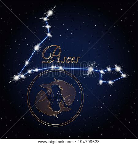 Constellation of the sign of the zodiac against the background of the starry sky.