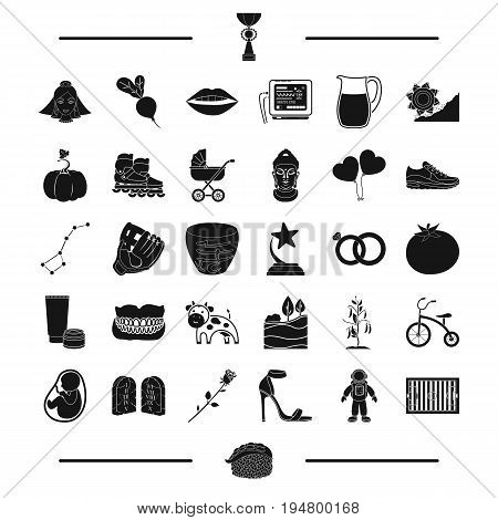 baseball, mine and other  icon in black style.plants, travel, shoes icons in set collection.