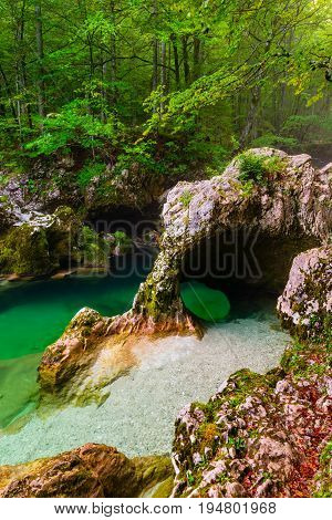River Mostnica (Mostnice Korita) and Elephant formation near lake Bohinj in Slovenia