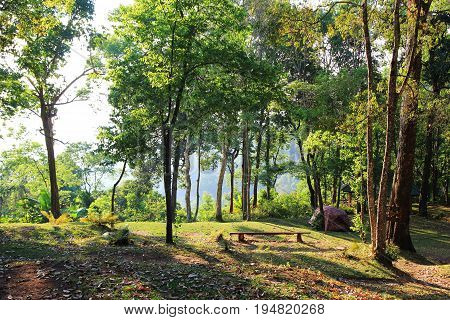 Travel To Doi Suthep National Park, Chiang Mai, Thailand. The View On The Mountain Camping In A Fore