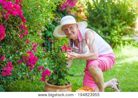 senior retired woman in garden