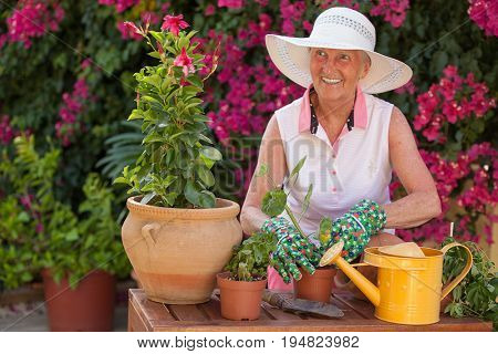 smiing pensioner in garden with pot plants