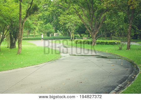 Beautiful view pathway or walkway in the park with green natural background. (Autumn filter effect)