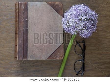Notebook mock up for artwork with purple allium and glasses. Top view. Place for text. Fresh flower