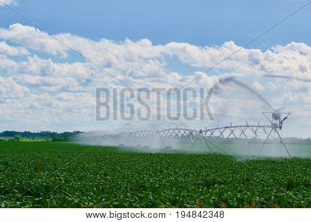 Commercial sprinklers watering crops with blue sky and clouds