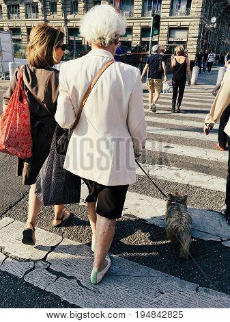 Milan Italy - June 10 2017: elderly woman with a dog crossing walk street at crosswalk