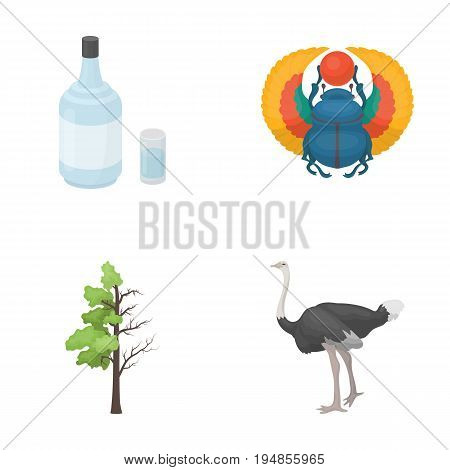Alcohol, forest and other  icon in cartoon style.history, animal icons in set collection.