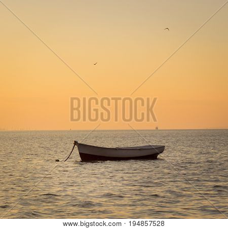 Sea lonely boat and gulls in the evening sky beautiful nature holiday season