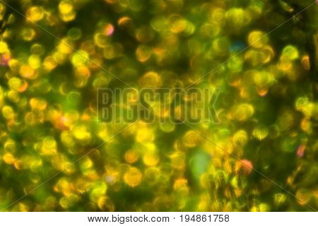 Abstract Yellow Green Pattern Fabric Texture On Israeli Money Bill Of 50 Shekel Under The Microscope