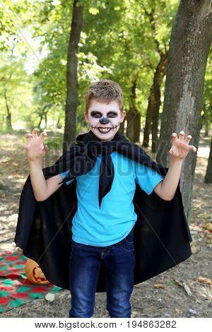 Little boy in halloween costume in the park outdoor