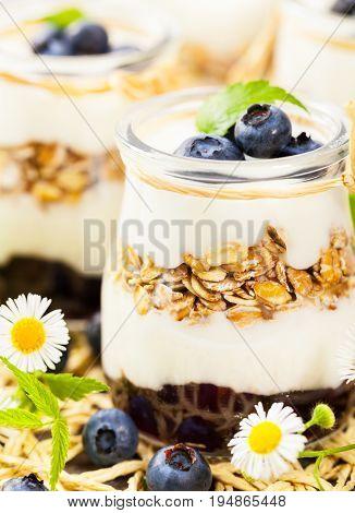 Granola. Granola with Yogurt, Honey and Blueberries.