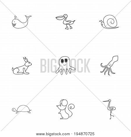 Set Of 9 Editable Zoology Icons. Includes Symbols Such As Pelican, Shadoof, Rat And More. Can Be Used For Web, Mobile, UI And Infographic Design. poster
