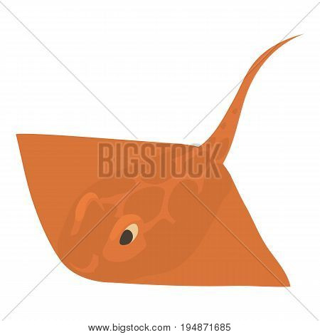 Stingray icon. Cartoon illustration of stingray vector icon for web isolated on white background