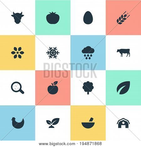 Vector Illustration Set Of Simple Ecology Icons. Elements Life, Bacteria, Storm And Other Synonyms Vegetarian, Dairy And Bloom.