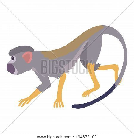 Going forward monkey icon. Cartoon illustration of going forward monkey vector icon for web isolated on white background