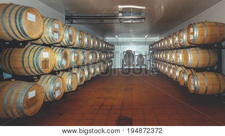 Wooden Barrels In A Modern Wine Cellar Natural Organic wine Concept
