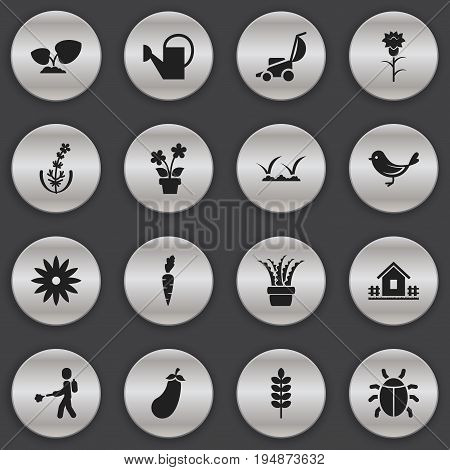 Set Of 16 Editable Planting Icons. Includes Symbols Such As Flower, Frond, Vera And More. Can Be Used For Web, Mobile, UI And Infographic Design.