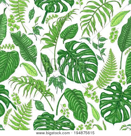 Hand drawn branches and leaves of tropical plants. Foliage seamless pattern made with monstera fern palm fronds sketch.