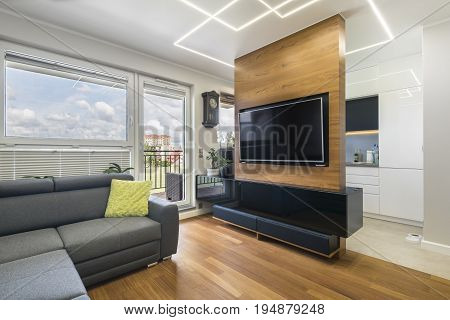 Modern living-room and kitchen in stylish apartment